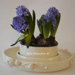Baltas keramikinis indas